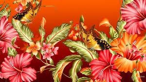 flowers summer hibiscus leaves flowers bright butterflies