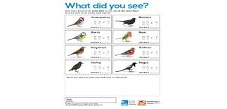 big schools u0027 birdwatch survey sheets science and geography