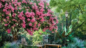 pink flower tree flowering southern trees you need to plant now southern living