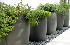 big size and dark color planter design put on pebble space in