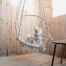 Gonna Swing From The Chandelier Im Gonna Swing From The Chandelier Im Gonna Live Like Tomorrow