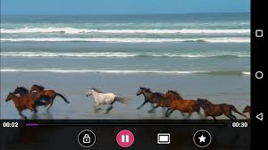 mp4 hd flv player apk player hd android apps on play