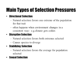 natural selection the process whereby organisms better adapted to