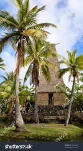 traditional hawaiian hut palm trees polynesian stock photo