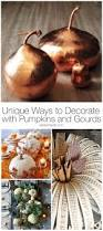 unique ways to decorate with pumpkins and gourds design dazzle