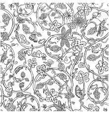 painted paper insects vivienne westwood insects coloring pages
