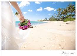 hawaii photographers hawaii wedding photographers l amour s daily of