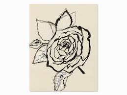 andy warhol rose india ink drawing c 1955india ink over pencil