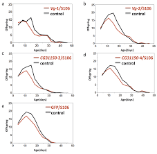 vitellogenin family gene expression does not increase drosophila