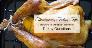 the most common turkey questions answered family balance sheet