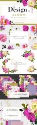 the design kit bloom illustrations creative market
