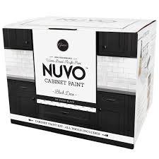 Kitchen Cabinets Painting Kits Nuvo Cabinet Paint U2013 Giani Inc