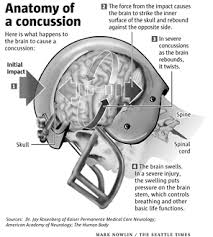 What Portion Of The Brain Controls Respiration Concussions And Advances In Safer Helmets U2013 Cobbers On The Brain