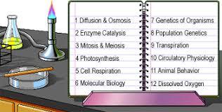Lab Bench Transpiration Biology Labs