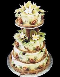 35 best cakes images on pinterest 30th birthday cakes 3d cakes