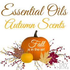 Fall Scents Healthy Fall Scents Diy Show Off Diy Decorating And Home