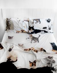 lifesize cat queen bed sheet set bedrooms pinterest queen