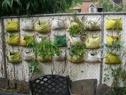 commmunity gardening vertical gardening update ii