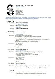pdf of resume format sle resume format pdf 708b15d21da228f7b1422323651da150 sle for