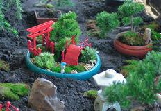 feng shui giardino jardin miniature de pot image stock image du mignon 53069683