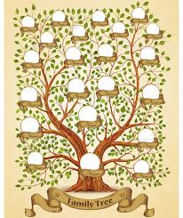 Family Tree Template By Yayasya Graphicriver Family Tree Template