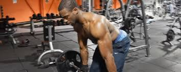 Bench Barbell Row Different Bent Over Barbell Row Types Best Barbells