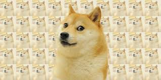 Dogee Meme - the doge meme is back and this time it s liquified