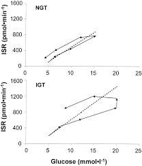 insulin release in impaired glucose tolerance diabetes