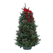 worcester wreath 28 in balsam fir classic fresh cut fresh pre lit