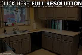 Kitchen Cabinet Replacement Hinges Modern Cabinets - Kitchen cabinet replacement hinges