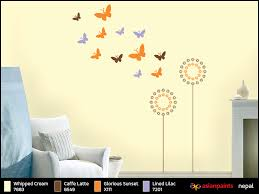 asian paints nepal walls nepal wall paints nepal wall paint