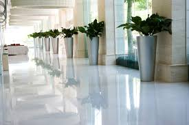 Home Decorators Location Commercial U0026 Residential Plant Service U0026 Installation Sarasota