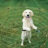 best deals fr black friday best deals on dog supplies for black friday 2015 u2013 top dog tips