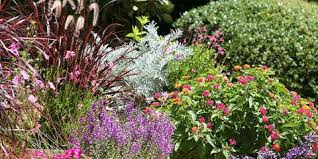 Houston Landscape Design by How To Plan Your Landscape Design Project With Colourscape Inc