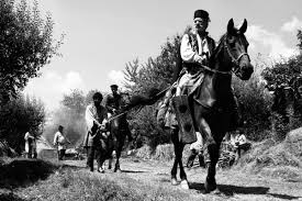 amazon black friday films 35mm black and white aferim 2016 rotten tomatoes