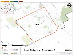 leaf collection city of waterloo