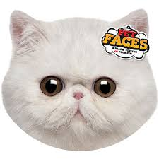 Cushion Pets Pet Faces Cushion Exotic Cat Cushions Of Your Pets Face