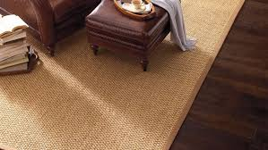Cheap Floor Covering Area Rugs Magnificent Natural Fiber Area Rug In Gray Rugs For