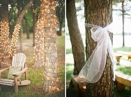 hochzeit ideen bäume dekorieren für hochzeit friedatheres