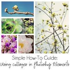 best 25 free collage templates ideas only on pinterest
