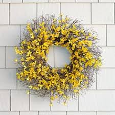 forsythia wreath forsythia wreath bright yellow forsythia sprouts from a bramble