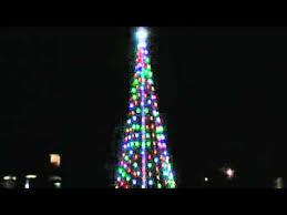 20 ft tree