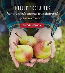 fresh fruit delivery monthly best 25 fruit company ideas on costa rica packages