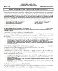 Professional Development Resume Marketing Resume Examples 47 Free Word Pdf Documents Download