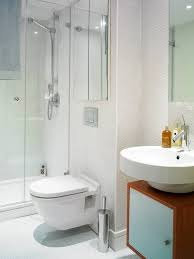 Houzz Bathroom Designs Bathroom And Toilet Design Pleasing Toilet And Bathroom Designs