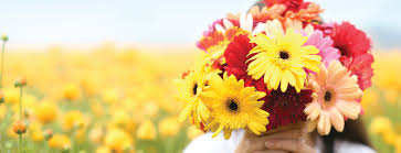 sending flowers flower delivery online send flowers the bouqs co