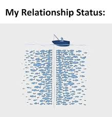 Fish In The Sea Meme - theres plenty of fish in the sea meme guy