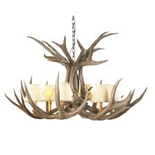 Antler Chandelier Canada Mule Deer Antler Single Tier Chandelier 6 Light