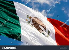 Flag That Is Green White And Red Green White Red Mexican Flag Waving Stock Photo 5829577 Shutterstock