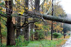 knocks trees causes power outages the berkshire